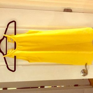 Banana republic petite lined halter dress